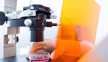 Microscopy Basics
